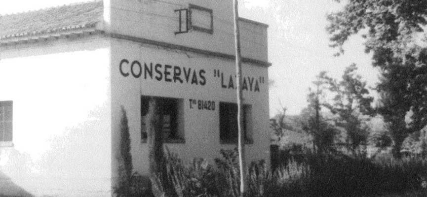 Historia de Lazaya, Conservas de Frutas y dulces de fruta confitada.