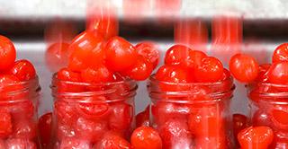 Deshuesado, desrabado y otros procesos se realizan en nuestra fábrica de fruta confitada en Calatayud.