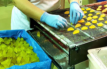 Different shapes of candied fruits for bakeries are used to make traditional fruits of Aragon.