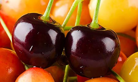 Production of candied fruits from different varieties of cherries in Aragón.