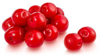 Amplia gama de Cherry in Syrup